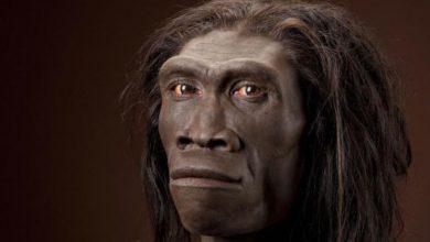 Photo of La comparsa dell'uomo in Piemonte risale a 200 mila anni fa