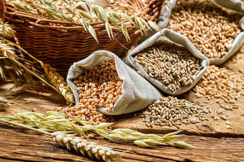 Photo of Con Slow Food alla scoperta delle proprietà dei cereali