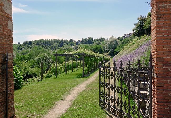 Photo of Sulle orme e tra gli orti eporediesi di Olivetti per sviluppare un ecosistema sostenibile