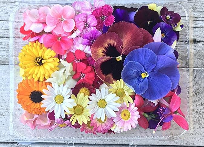 """Photo of I fiori """"buoni da mangiare"""" arrivano nei supermercati e sulle nostre tavole"""