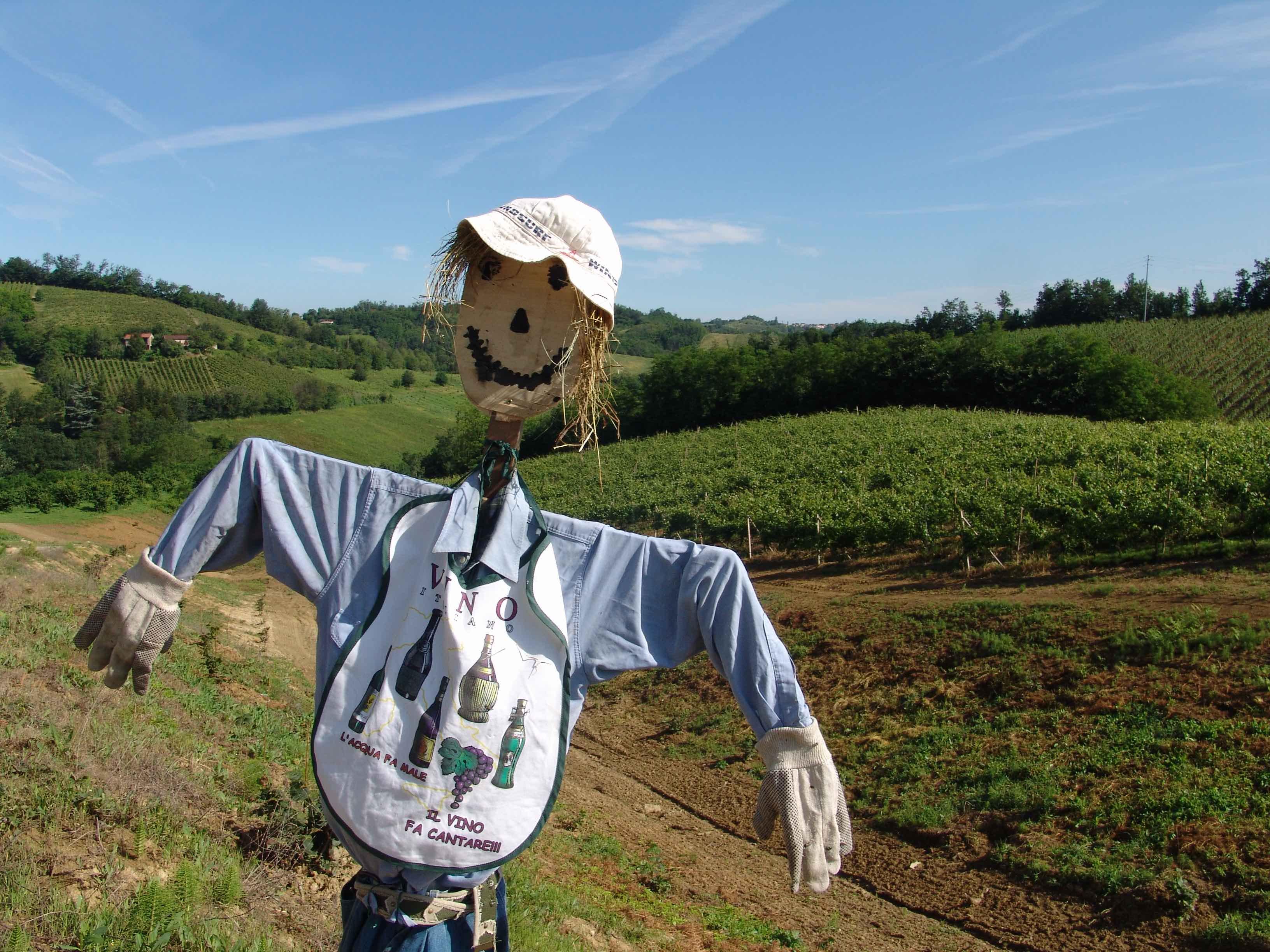 Photo of A Morsasco, a passeggio con compagni particolari: gli spaventapasseri