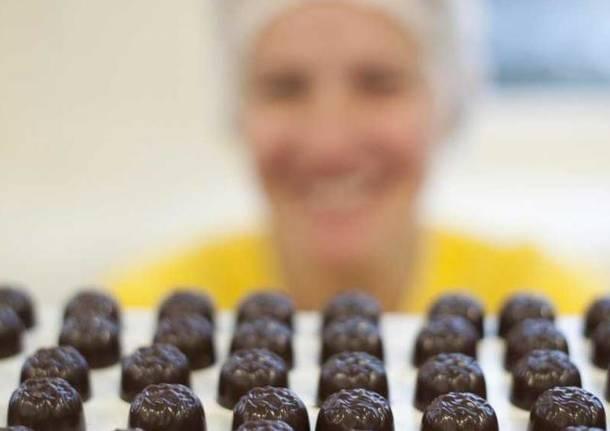 Photo of La Ferrero cerca assaggiatori di cacao e nocciole per migliorare cioccolatini e snack