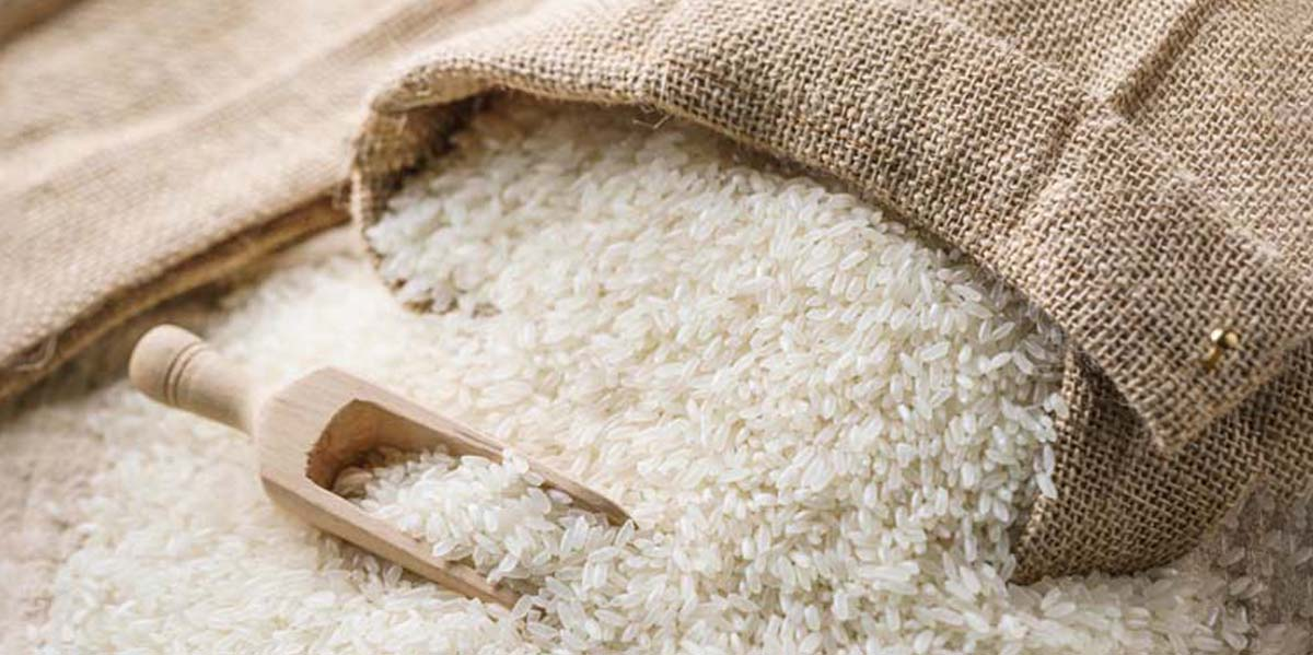 Photo of Vercelli, nasce il riso capace di combattere le patologie legate all'invecchiamento