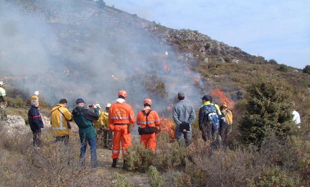 Photo of Il Corpo antincendio boschivo piemontese si gemella con quello siciliano