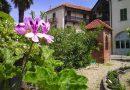 Casa Zuccala, il fascino discreto della borghesia: visite alla dimora anche in agosto