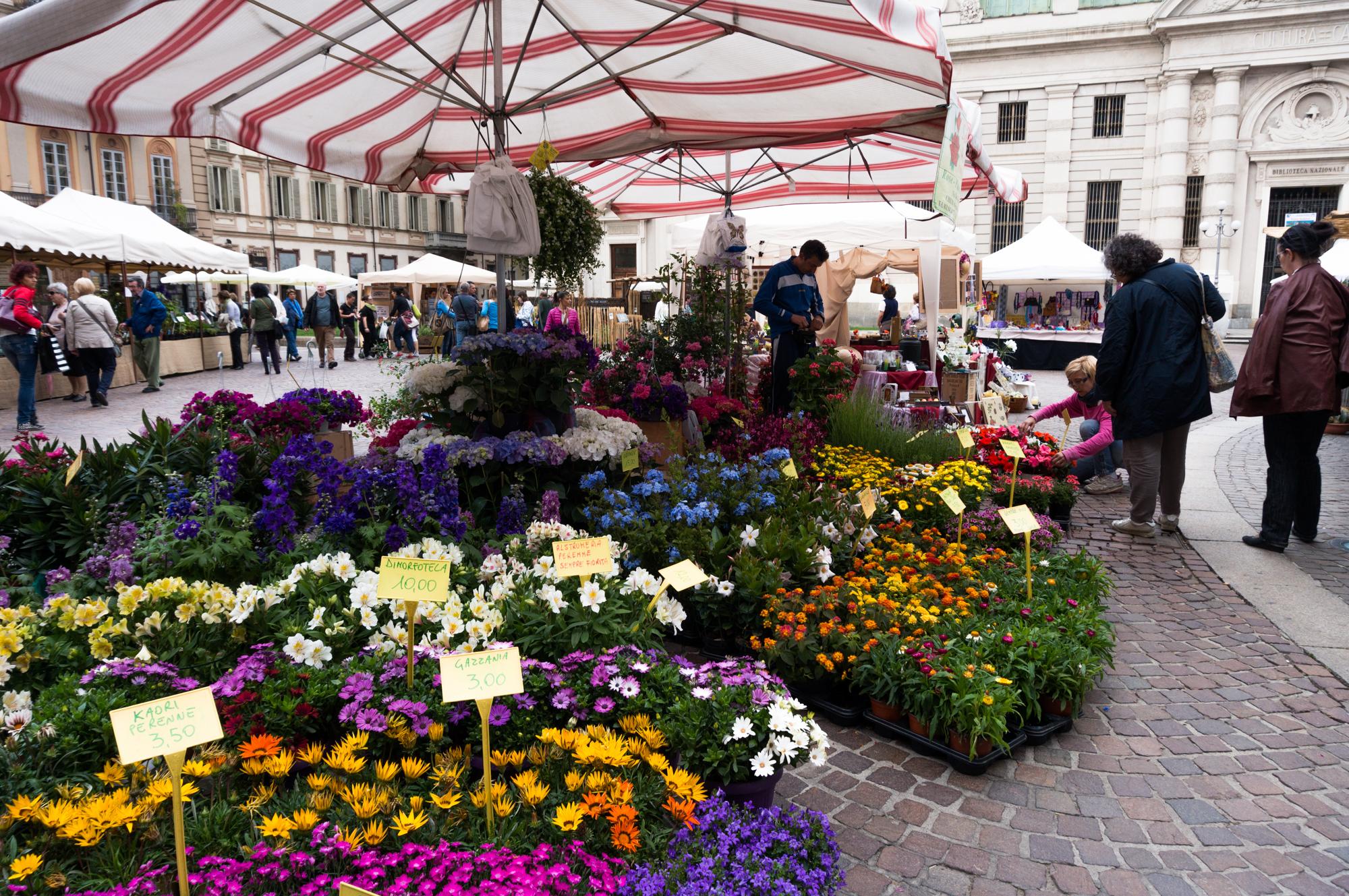 Photo of Week-end all'insegna delle eccellenze florovivaistiche: nel cuore di Torino 180 espositori
