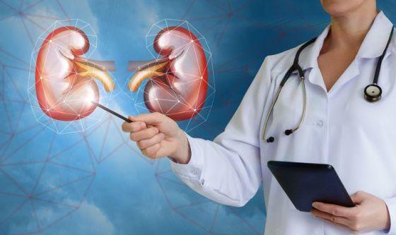 Photo of Screening gratuiti e informazioni sulle malattie renali: l'appuntamento è alle Molinette