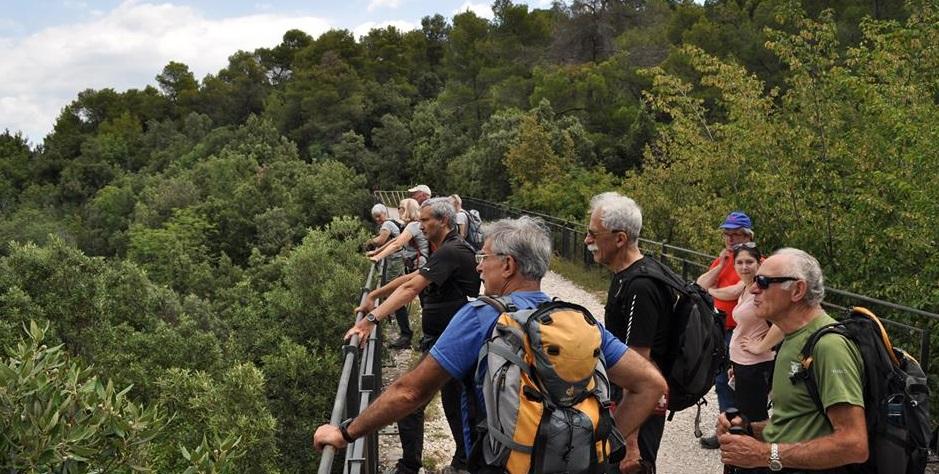 Photo of Montagnaterapia, in Piemonte sempre più persone ne apprezzano i benefici