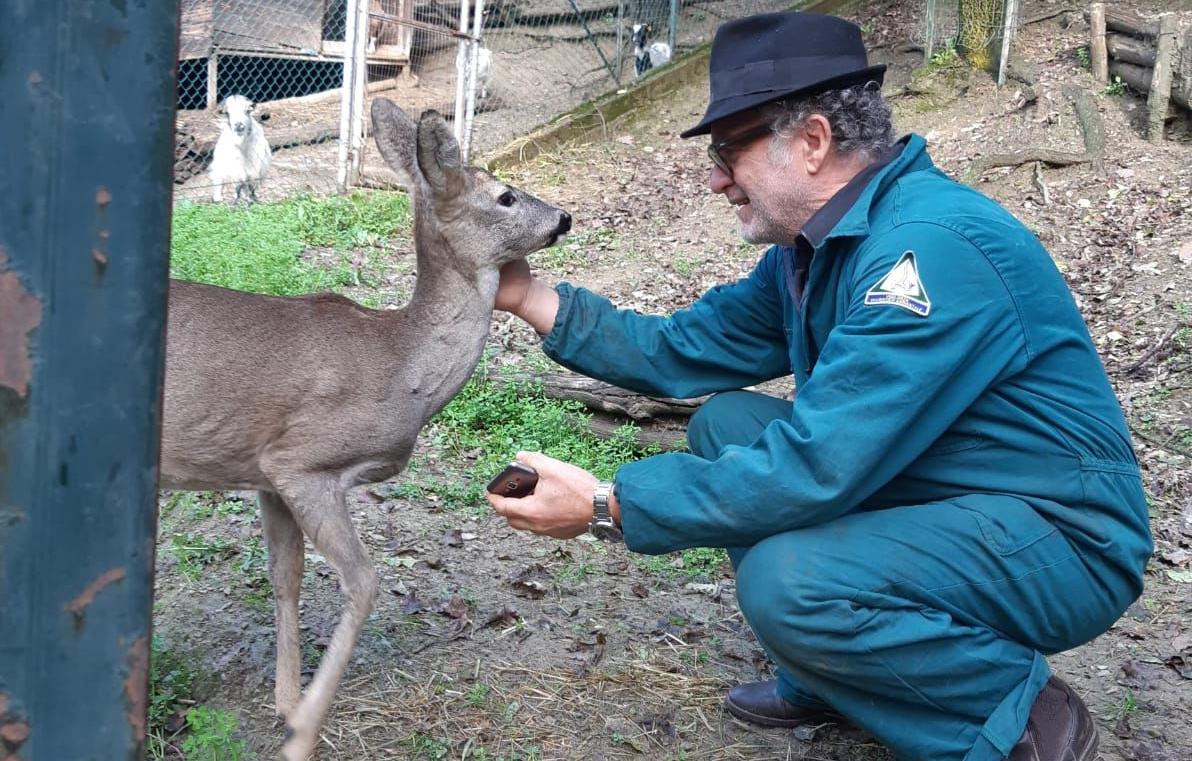 Photo of Avventura a lieto fine per un giovane capriolo: a salvarlo sono stati due cacciatori