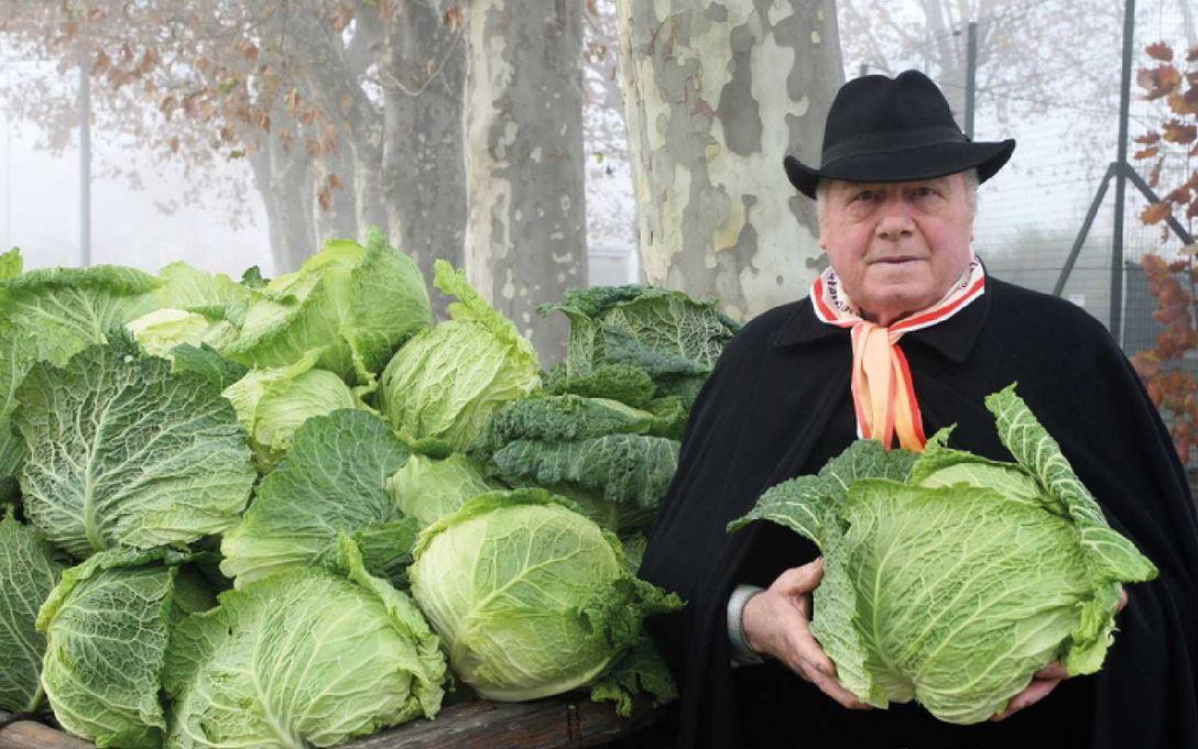 Photo of E' dal 1996 che a Montalto Dora si vanno a scoprire i benefici del cavolo verza