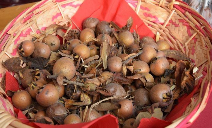 Photo of Nel weekend, una fiera dedicata a un frutto tipico della Bassa Langa: il puciu