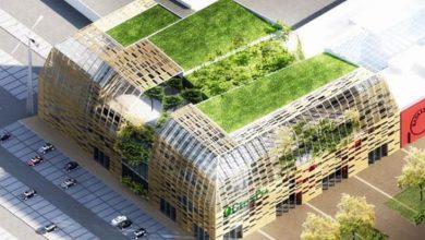 Photo of Green Pea, dove vendita           e relax sono ecosostenibili