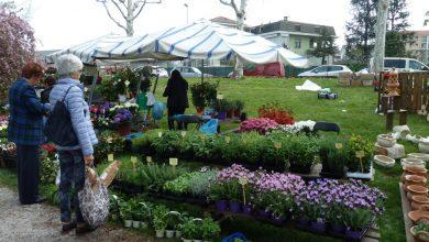 Photo of Carmagnola, una kermesse all'insegna di orti e giardini il 6 e 7 aprile