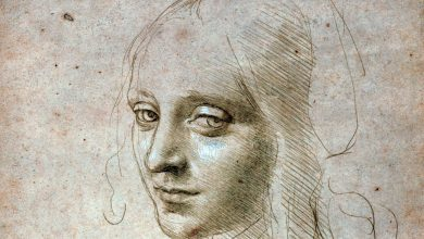 Photo of Galleria Sabauda, i disegni di Leonardo in mostra sino a luglio