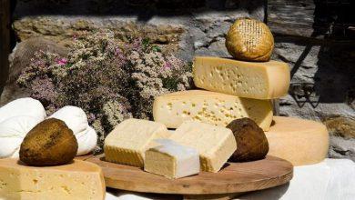 Photo of In attesa di Cocco…Cheese, assaggi di formaggi in 10 locali