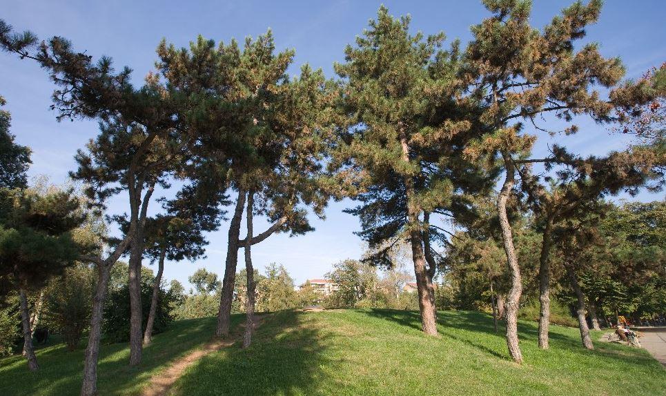 La storia quasi centenaria del Parco Ruffini, per molti