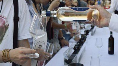 Photo of Tra droni e gps sui trattori, Gavi prepara un festival del vino 4.0