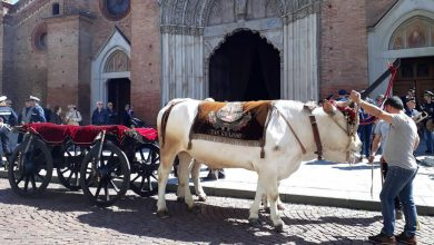 Photo of Chieri, da oltre 800 anni si ripete la tradizione contadina