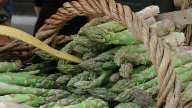 Photo of Sagra dell'asparago di Santena: tanti eventi sino a domenica