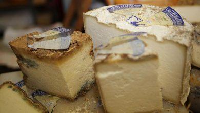 Photo of Un antico formaggio simbolo dell'alta Valle Grana: il Castelmagno