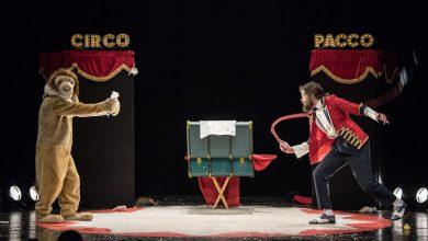 Photo of Al via il Festival del circo a Grugliasco: proseguirà sino al 27 luglio