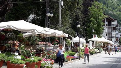 Photo of Torna Flor, Bardonecchia si trasforma in un giardino