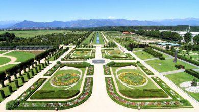 Photo of Viaggio fotografico nei Giardini delle Residenze Reali d'Europa