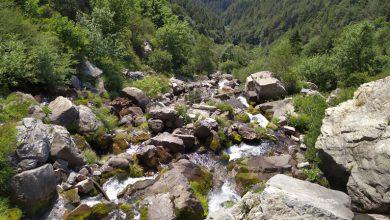 Photo of Alla ricerca di un po' di frescura alle sorgenti del Tanaro…