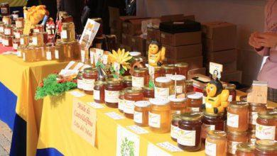 Photo of Week-end dedicato al miele a Marentino con tanti prelibati assaggi