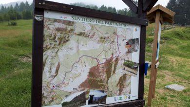 Photo of Il parco del Colle del Lys festeggia 15 anni di attività e tutela dell'ambiente