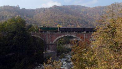 Photo of Un imperdibile treno storico tra funghi, castagne e colori d'autunno