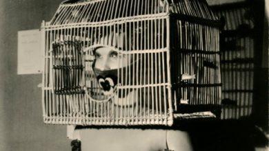 Photo of Camera dedica una mostra al grande fotografo Man Ray