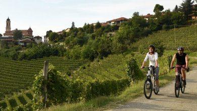 Photo of In bici con Claudio Chiappucci tra le vigne di Langhe, Roero e Monferrato