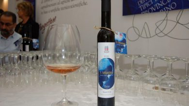 Photo of Provincia Incantata a Exilles per svelare i segreti del Vino del Ghiaccio