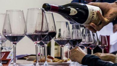 Photo of Enogastronomia, a Bra appuntamento con il festival WineAround