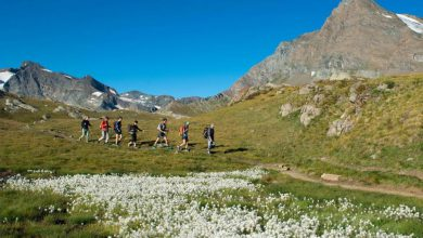 Photo of Novanta escursioni gratuite sul versante piemontese del Parco Gran Paradiso