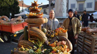 Photo of Non solo asparagi, l'autunno a Santena porta la Sagra della zucca