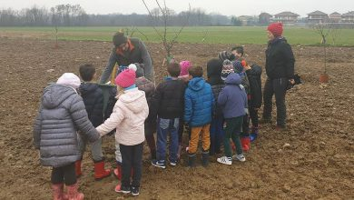 Photo of Frutteto a Volpiano, i primi alberi piantati dai bimbi delle scuole