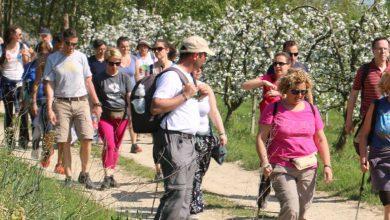 """Photo of """"Sentiero Verde"""", 31 escursioni nel 2020, si parte da Passerano Marmorito"""
