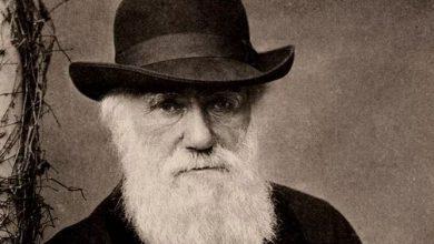Photo of Moncalieri rende omaggio a Darwin nell'anniversario della nascita