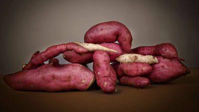 Photo of Batata, il tubero coltivato in Valle Grana dalle tante proprietà benefiche