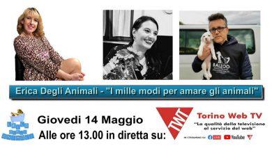 """Photo of Giovedì torna il programma """"Erica degli Animali"""" su Torino Web Tv"""