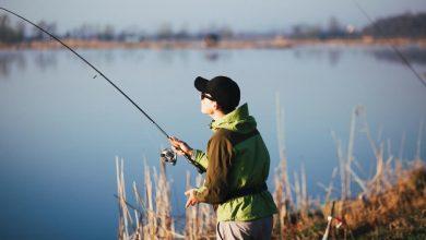 Photo of Riapre la pesca sportiva e l'addestramento di cani