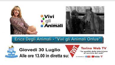 Photo of Ultima puntata di Erica degli Animali su Torino Web Tv prima della pausa estiva