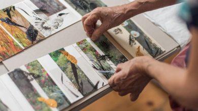 Photo of Tre giorni sulle Alpi per creare un taccuino d'artista