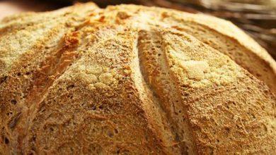 Photo of Dall'arte bianca novarese: a base di farina di mais, ecco il pan malgon
