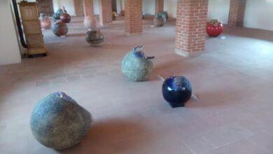 Photo of Castellamonte, un'installazione ci fa riflettere sulle problematiche ambientali