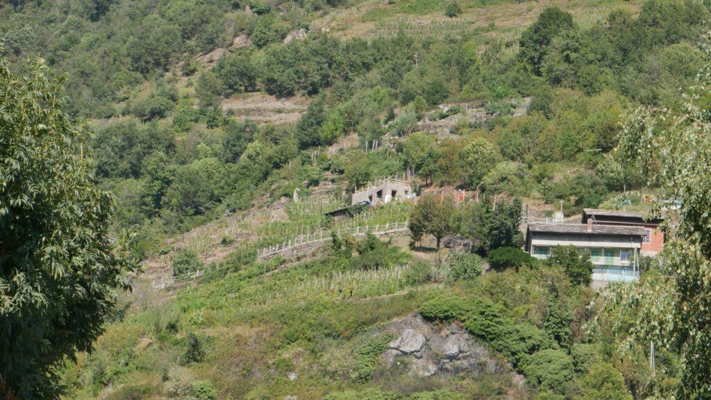 Questa immagine ha l'attributo alt vuoto; il nome del file è Recupero-del-Ciabot-di-Pomaretto-1024x576.jpeg