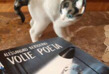 """Photo of """"A volte poeta"""": l'ultima intrigante silloge di Alessandro Bertolino"""