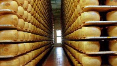 Photo of Parmigiano Reggiano, una crescita del 4,9% nonostante il Covid: i segreti del successo